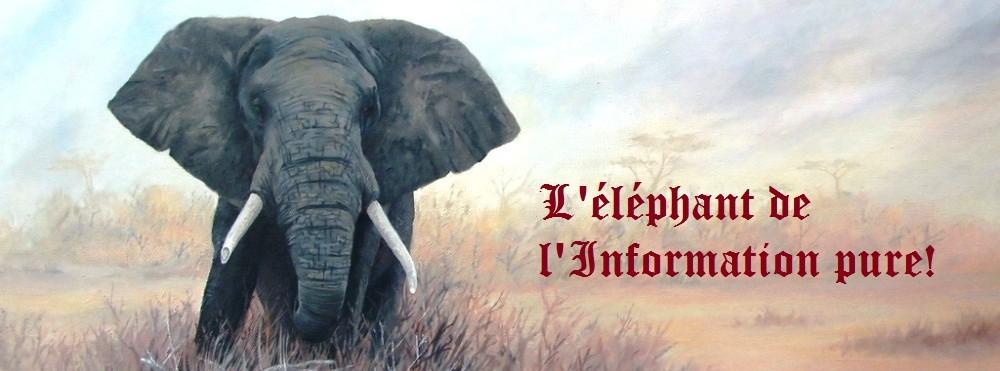 La côte d'ivoire au jour le jour!