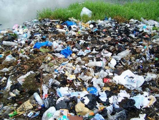 Les sacs plastiques contribuent à la pollution des villes Ivoiriennes @kingsuy